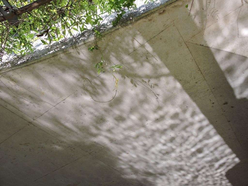 橋の天井に写る水面